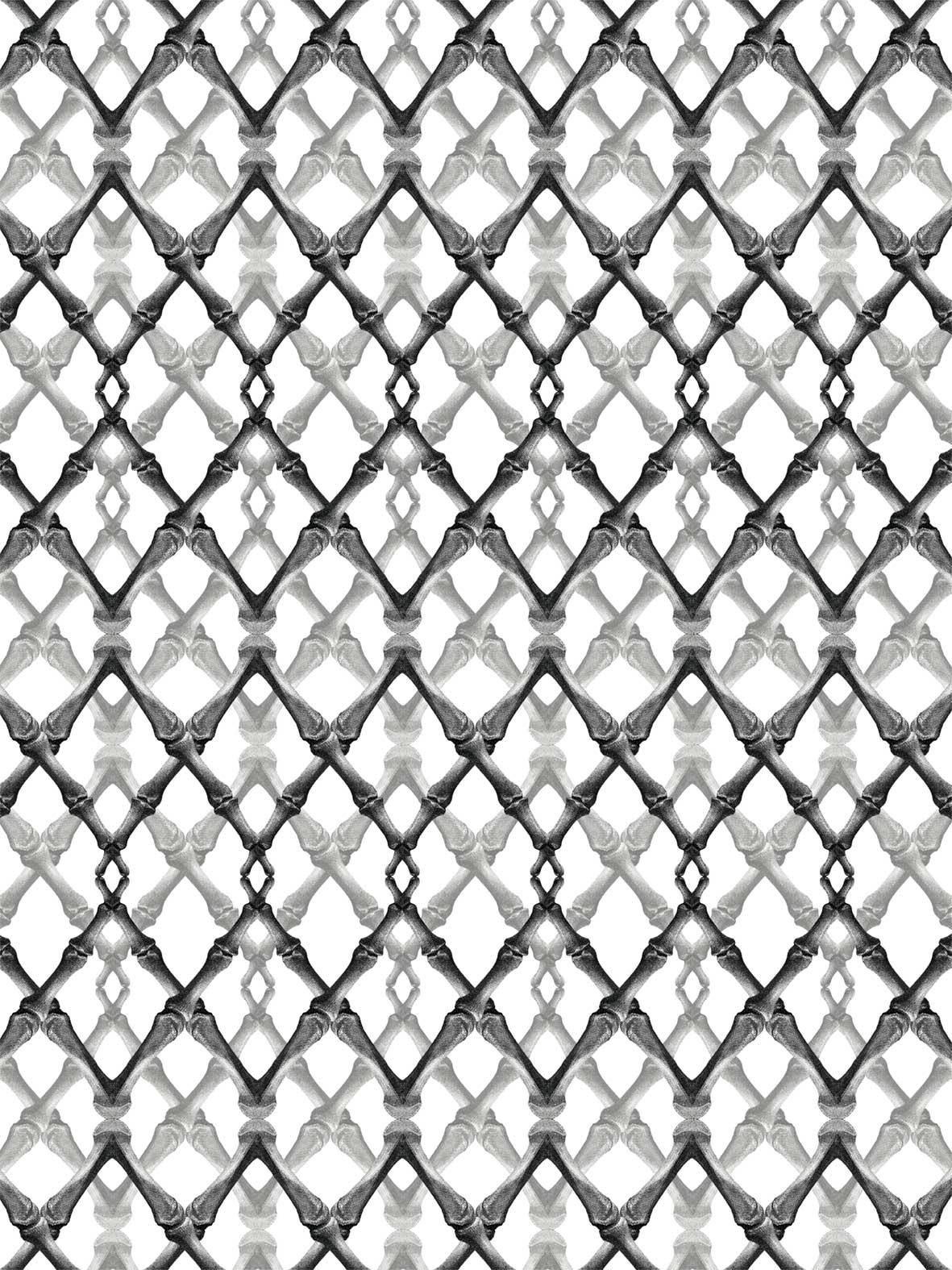 Pattern Bones Black White