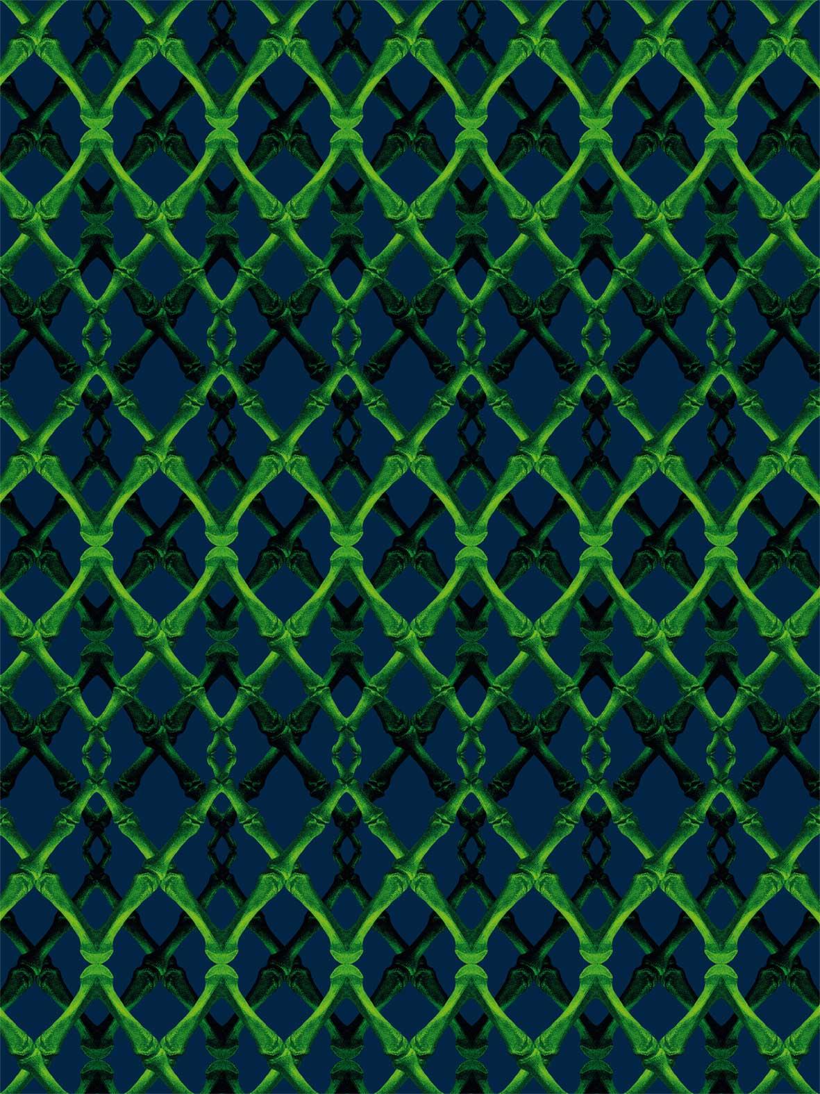 Pattern Bones Color